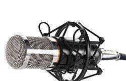 Best Vocal Microphones