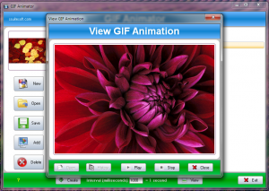 Best Tools To Create Animated GIF's