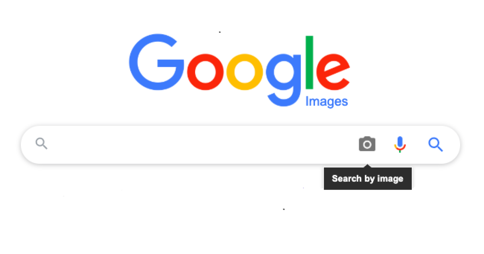 How To Perform A Reverse Image Search 2021 Amazeinvent