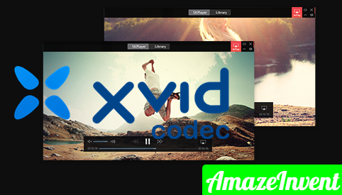 Use the Xvid Codec
