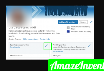 opentowork 1 300x184 png 300×184  - How to Add Promotion on LinkedIn?