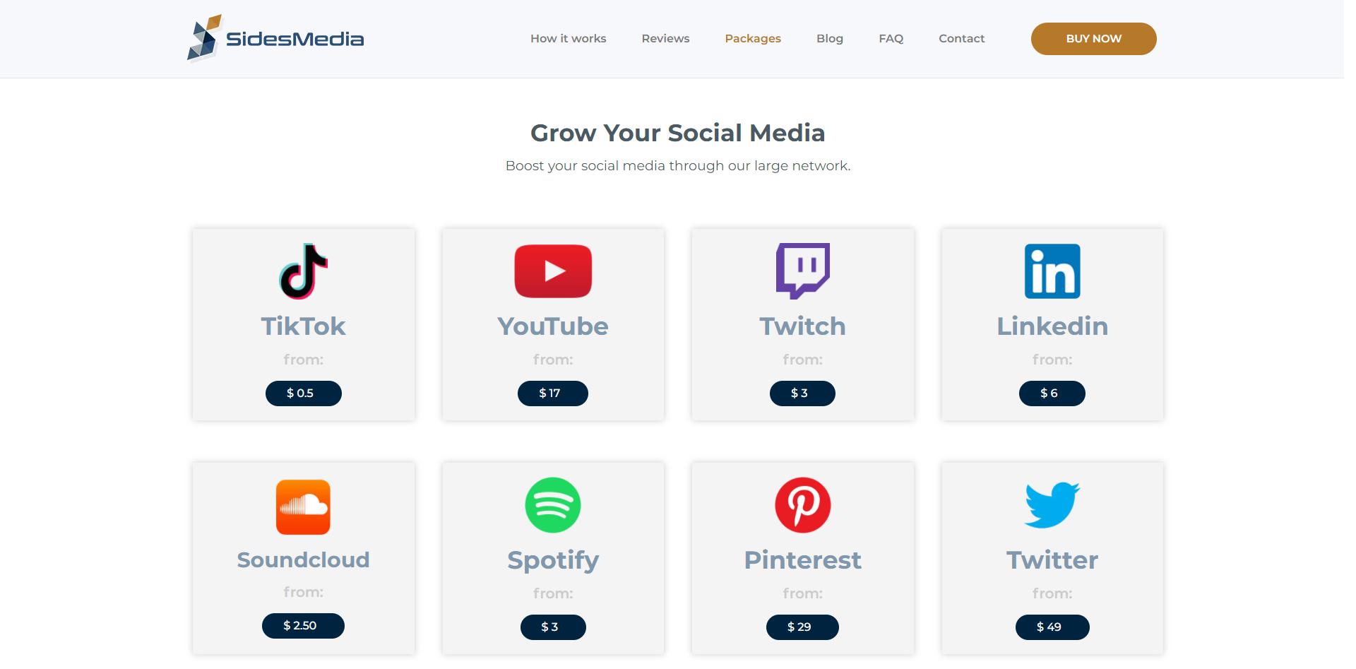 SidesMedia - Top 10 TikTok Viewer Website 2021 [ List ]
