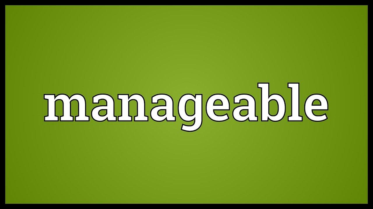 managable - 20+ Best Free Online Manga Websites 2021
