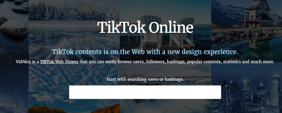 TikTok Viewer Website